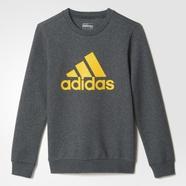 adidas 阿迪达斯 训练 男大童 套头卫衣 深麻灰 AY8212